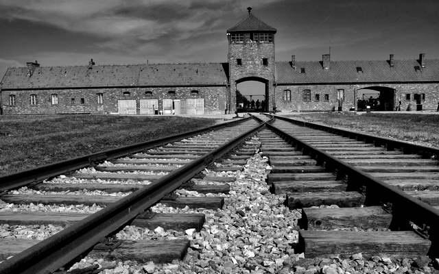 Hitler'in kurbanları Türk soylu muydu?