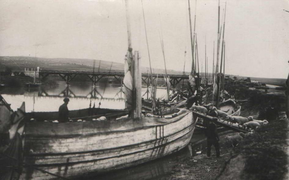 Rydakos Çayı'ndan İskele Mahallesi'ne Kocasu'nun yolculuğu